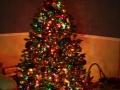 christmasday0836