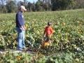 pumpkinpatch2012_001